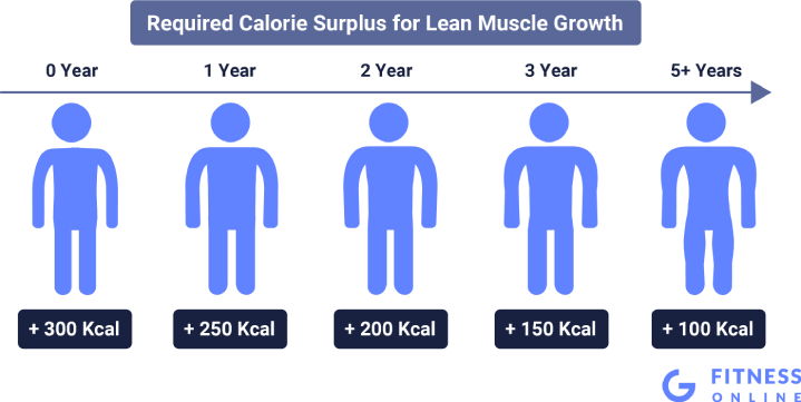 Development of Calorie Surplus for Lean Muscle Growth