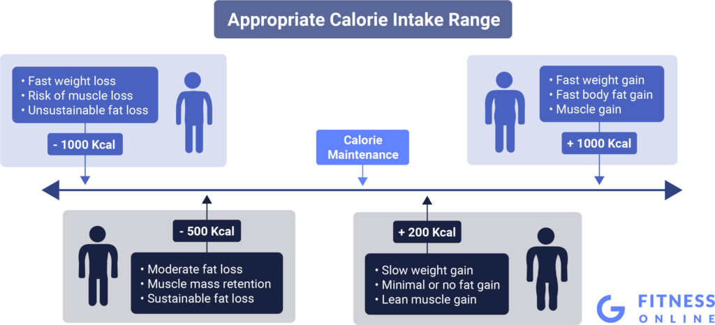 Appropriate Calorie Intake Range For Your Diet