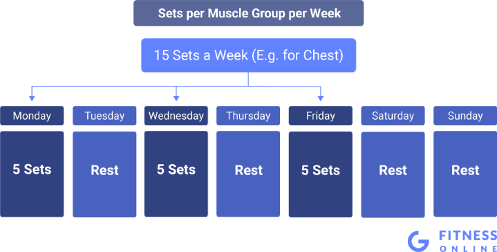 Sets per Muscle Group per Week Distributed in a Weekly Workout Plan
